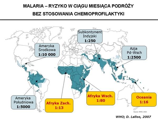 malaria01